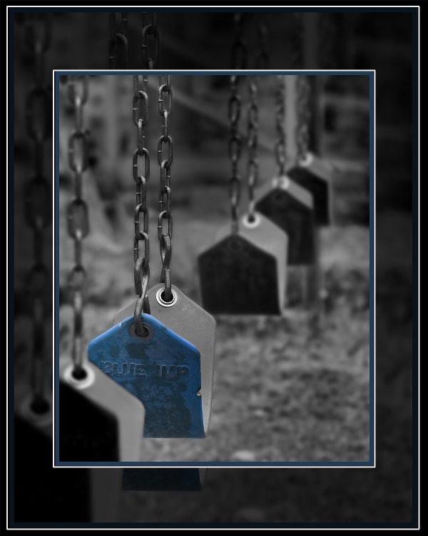 swings-11x14