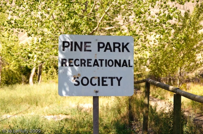 Pine_Park__(13_of_27)